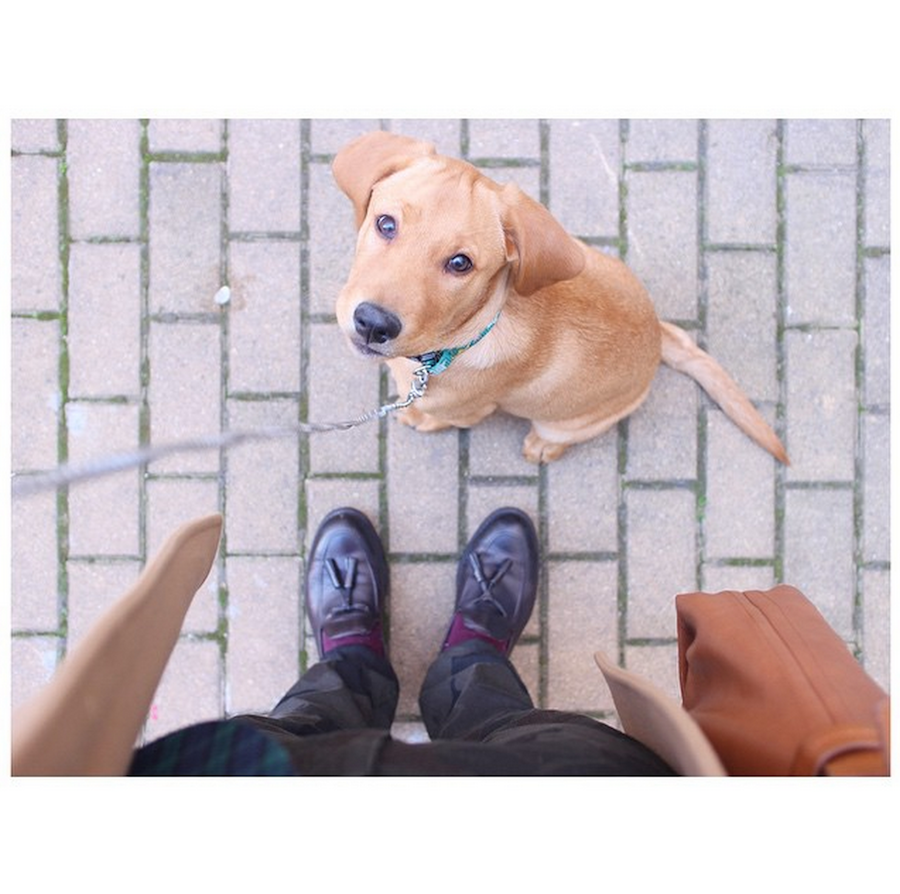 Insta-love_Instagram_Doublecloth_7